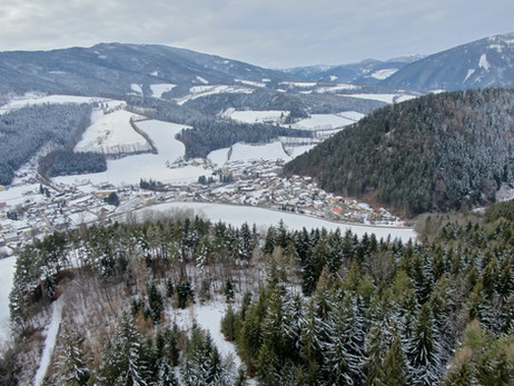 Klosterwald Fernblick