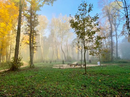 Klosterwald Harmannsdorf Rohrwald Herbst 2020