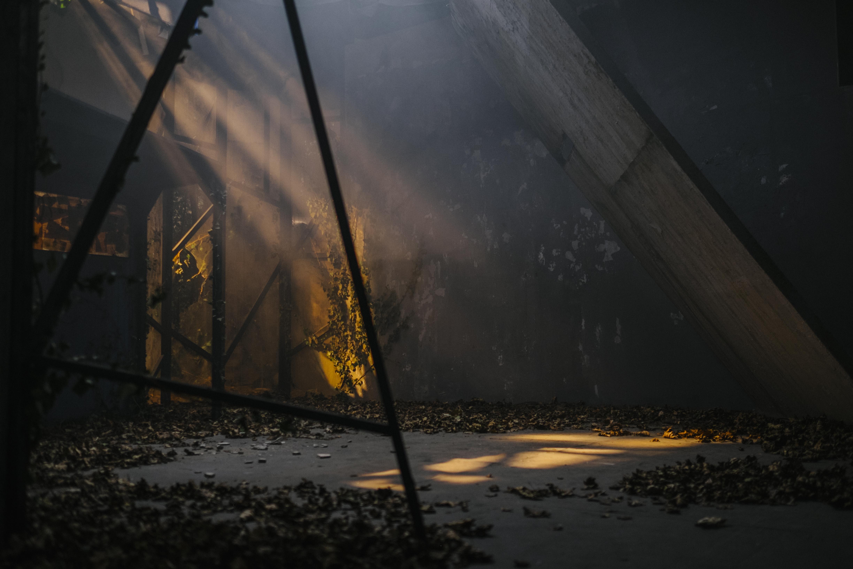 Prana - Foto: Marco Quandt