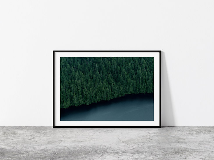 Print Nº 9 - Tongass National Forest Overhead