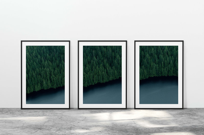 Print Nº 15 - Set of 3 Tongass National Forest Overhead