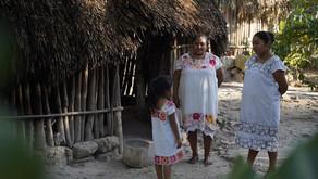 El turismo responsable es una forma de vida del Caribe Mexicano