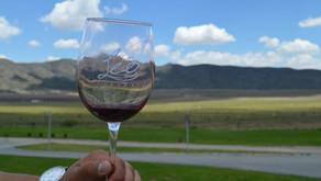 Los vinos del Valle de Parras Coahuila, en su mejor momento.