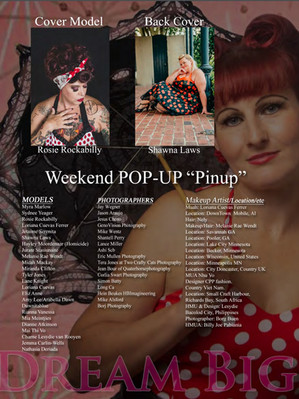 Pinup Contents.jpg