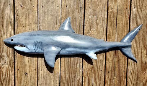 Great White Shark 36 inches long