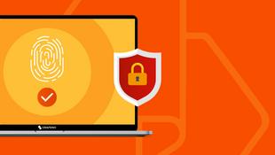 5 dicas para evitar a fraude online que ninguém te contou antes.