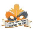 לוגו אירוע - מזרחי טפחות פורים
