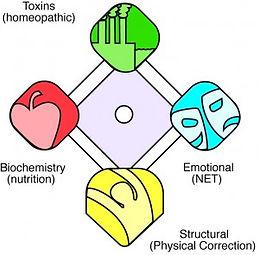 Tox-Bioc-Struct-Emo-diagram5-300x295.jpg