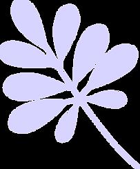 ok fleurs