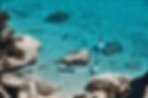 Capture d'écran 2020-05-31 à 17.56.04-2.