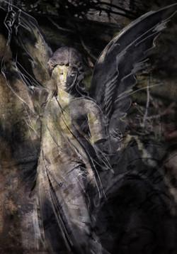 Dark_angel_318_a2