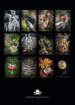 Kalender I