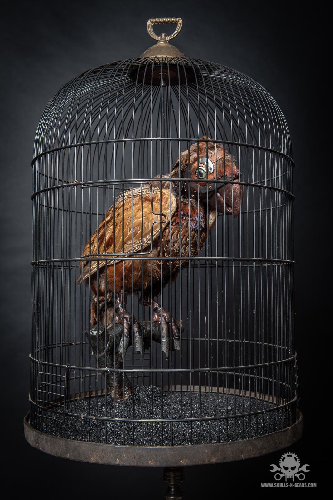 Steampunk Papagei-6