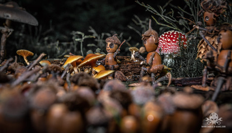 The Fallen Nuts - Band-10.jpg