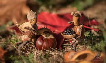 Herbst 12