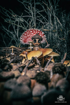 The Fallen Nuts - Band-14.jpg