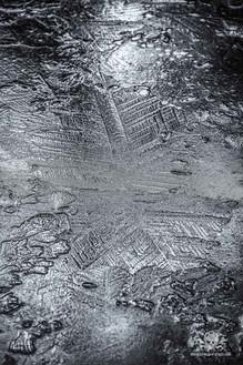Winter - Frost-25.jpg