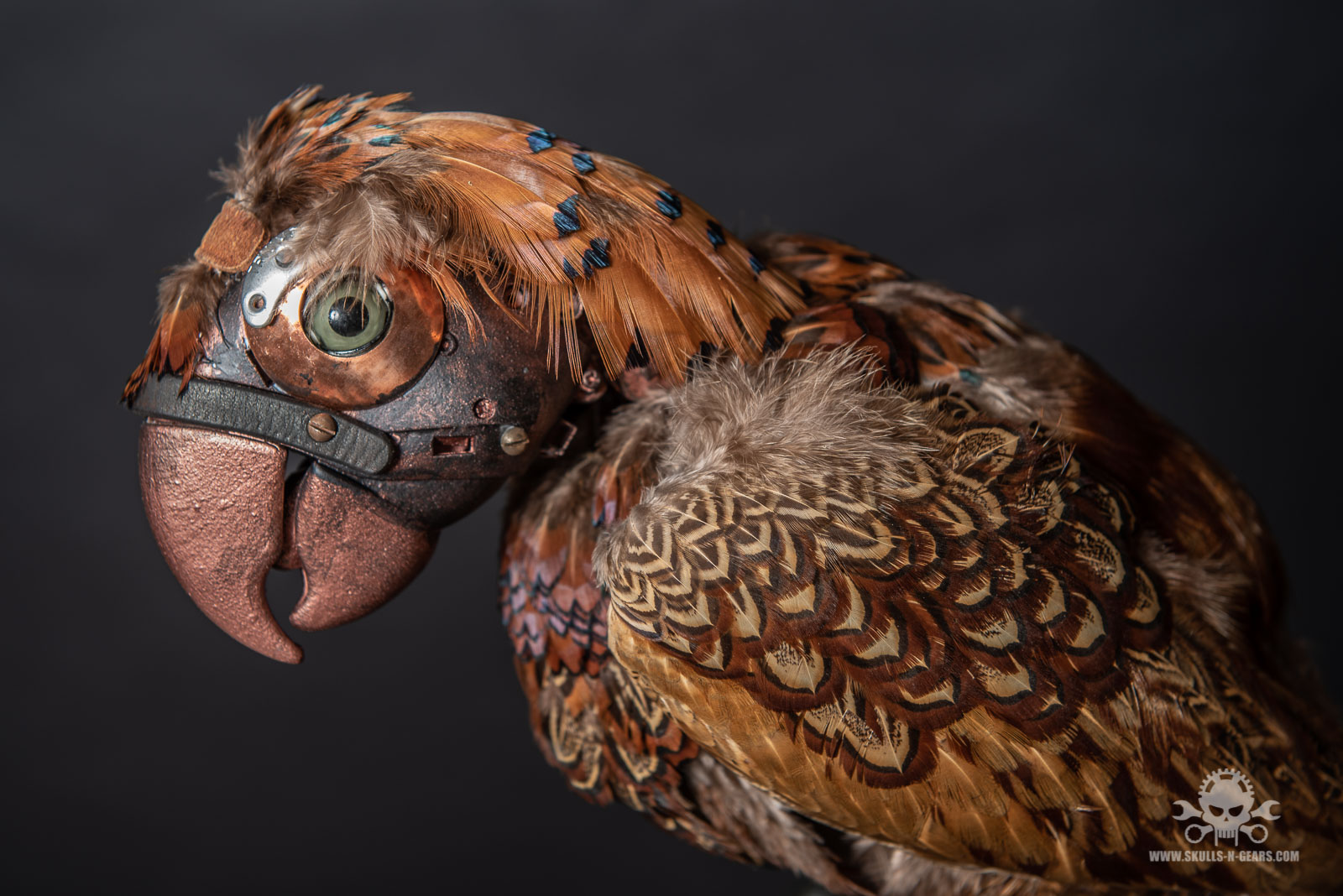 Steampunk Papagei-10