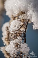 Winter - Eislandschaften 005