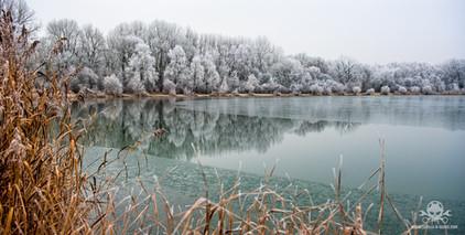 Winter am See 080