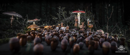 The Fallen Nuts - Band-37.jpg