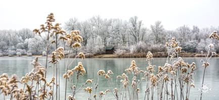Winter am See 053