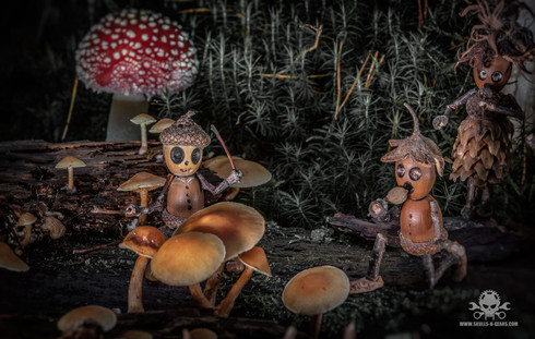 The Fallen Nuts - Band-23.jpg