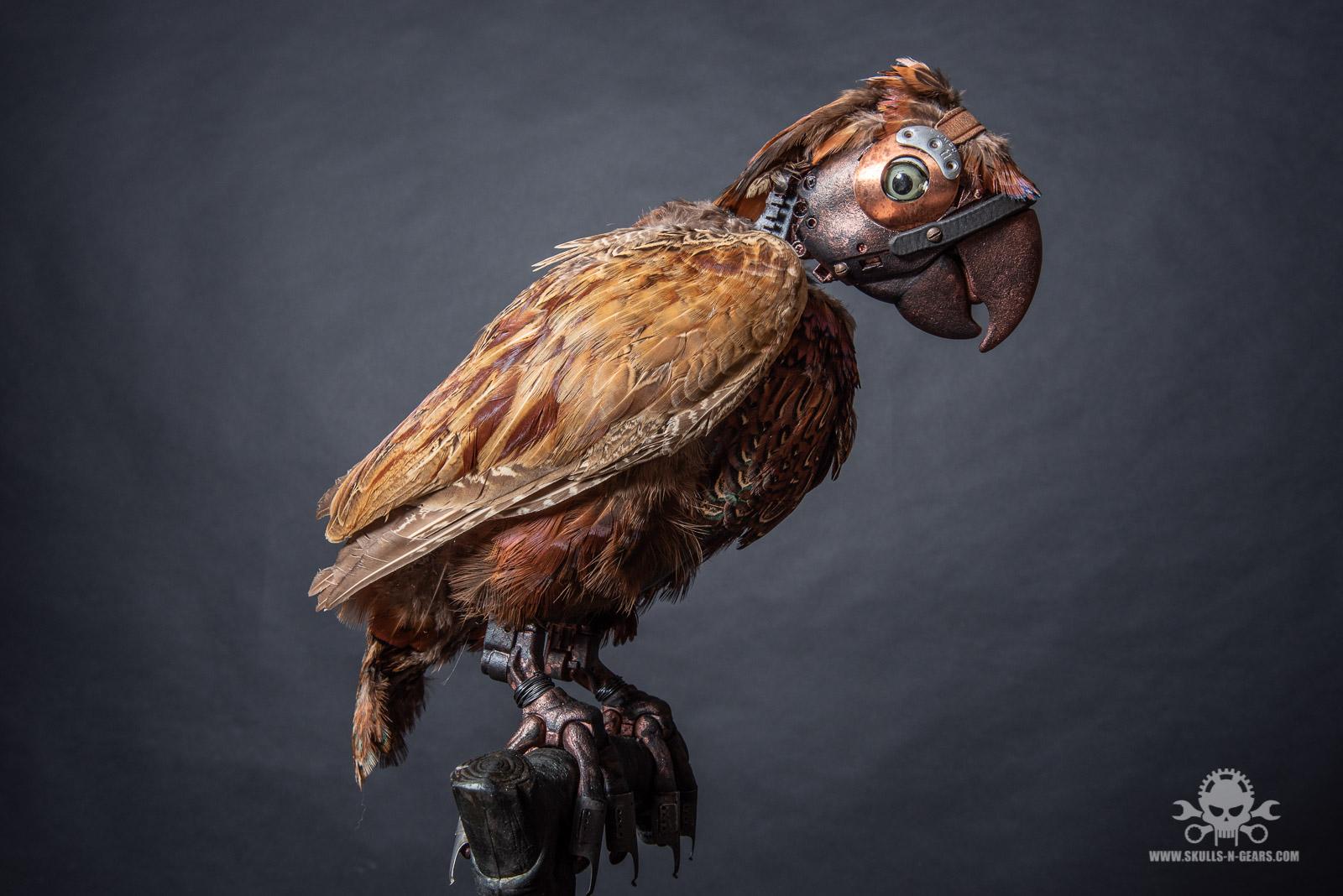 Steampunk Papagei-3