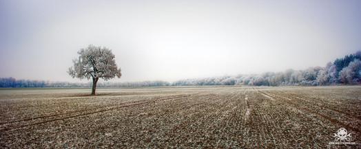 Winter - Eislandschaften 003