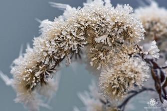 Winter - Eislandschaften 011