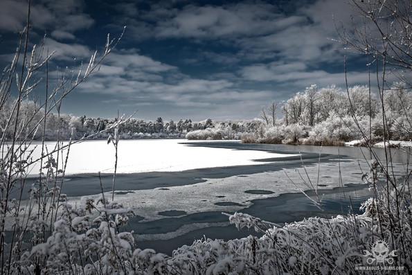 Winter am See 078