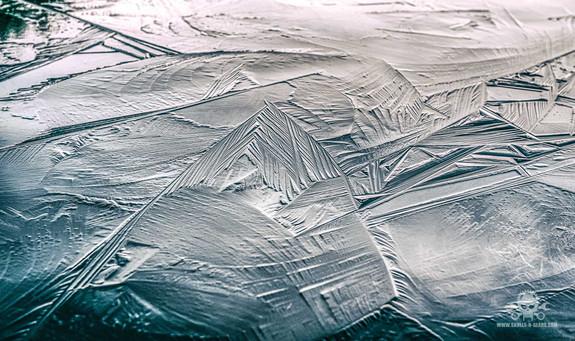 Winter - Frost-95.jpg