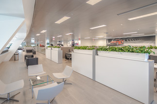 Audi Offices