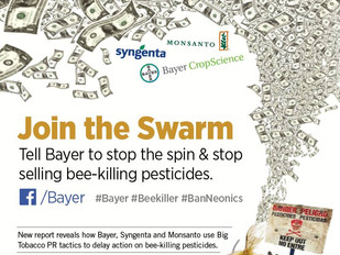 Petition of the Week: Are Pesticides  Killing Honey Bees?  Duh!!   Tell Bayer to Stop Selling Bee Ki
