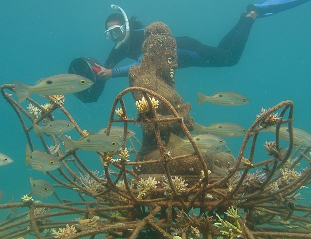Coral Godess with diver.jpg