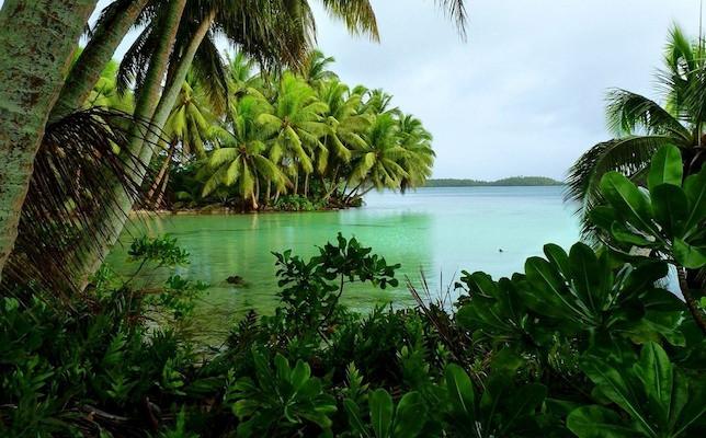 strawn_island part of Palmya Atoll National WIldlife Refuge photo via USFWS.jpeg