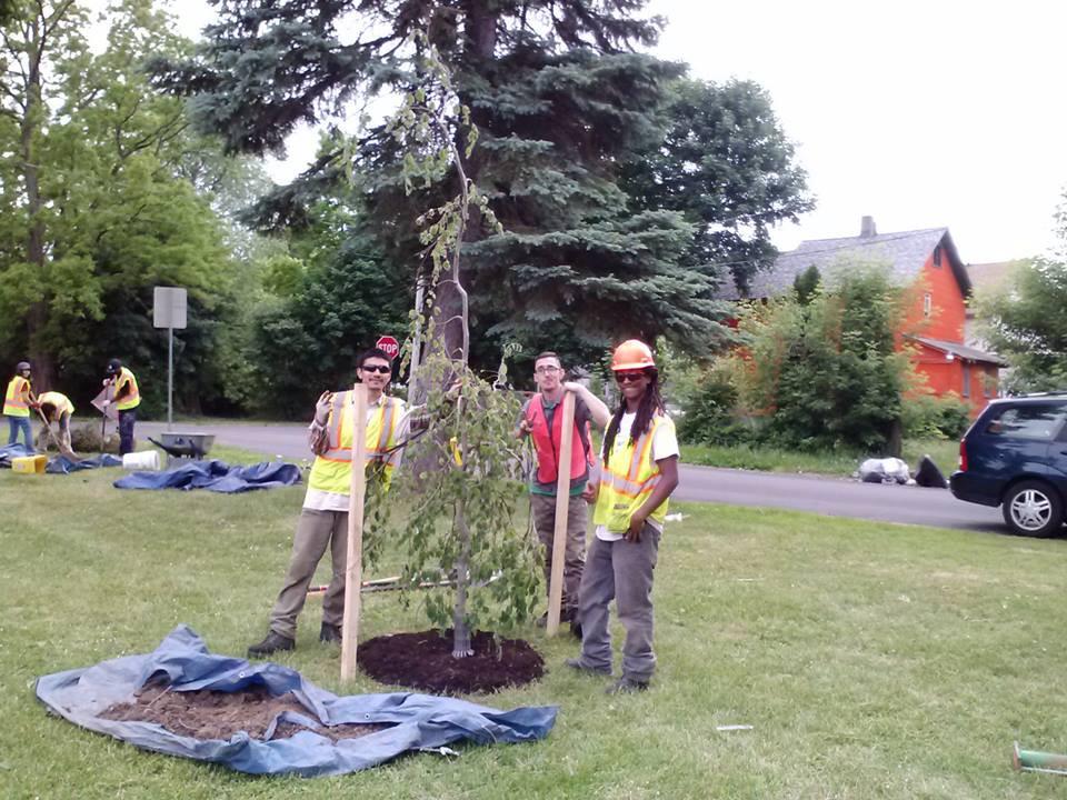 syracuse community tree planting.jpg