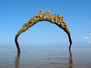 Sandcastlematt Rocks with His Stunning Seaside Sculptures Made of Sand and Driftwwod