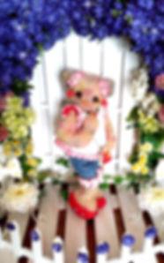 キラキラ_20190124_183145_edited_edited.jpg