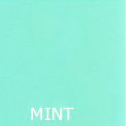 "MINT 36"" LONG BED SKIRT"