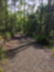 Summit Track Mike Robertson.jpg