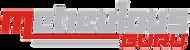 Meticulous.Guru Main Logo