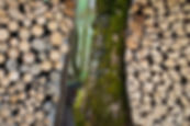 Flickr - wood piles