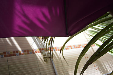 purpleumbrella_9058s.jpg