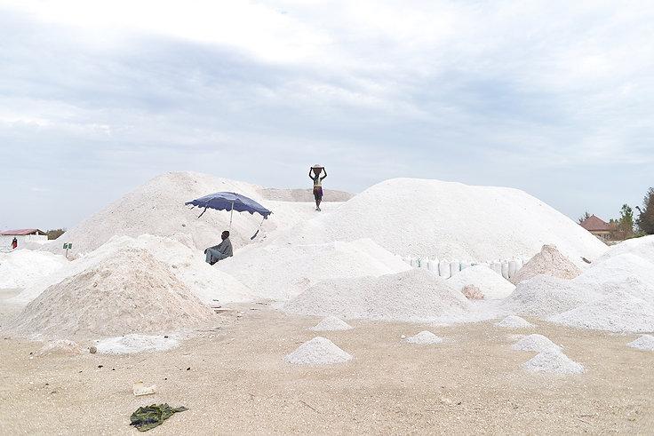 Saltdunes.s.jpg