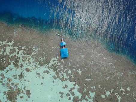 Indonesia: Explorando en aguas calmadas...