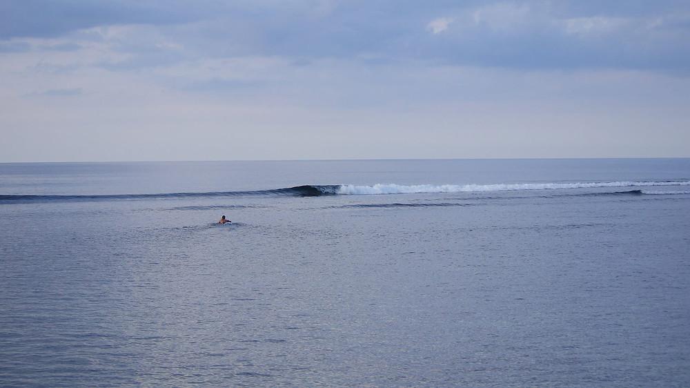 SURF LUZON