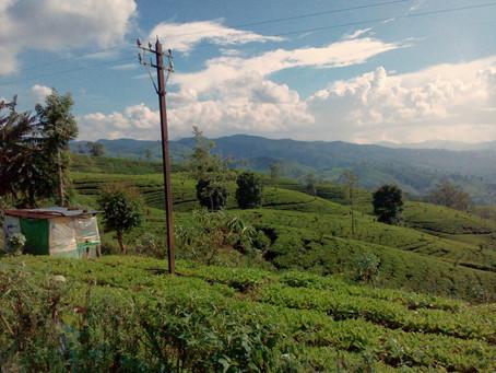 """Sri Lanka """"Fuera de ruta"""""""