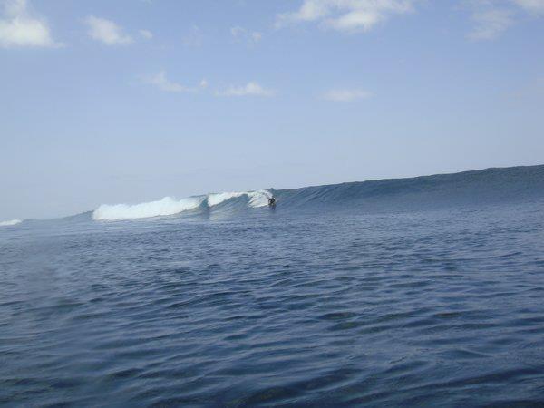 T-LAND WAVE