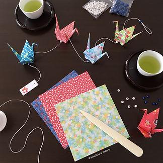Atelier origami adulte Libellule & Sakura